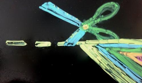 Editing Scissors by Katta Hules